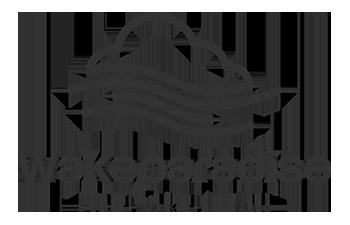 Wakeparadise